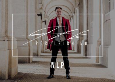 NLP – SALGCOACHING | PERULRICH.NU